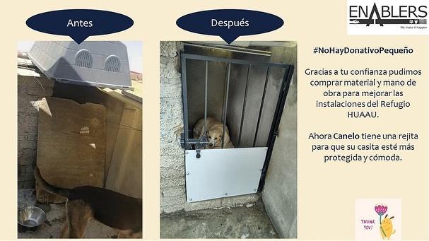 Gracias a tu confianza y a tus donativos pudimos comprar material y mano de obra para mejorar las instalaciones de Huellas De Un Amigo Animal Único – HUAAU